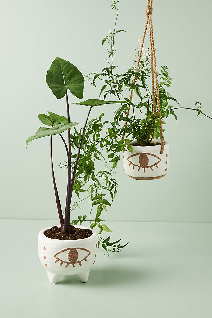 eye hanging plant pot